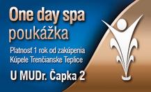 One day spa - U MUDr. Čapka 2