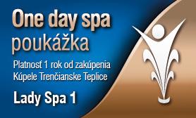 One day spa - Lady Spa 1